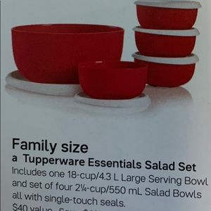 New! Tupperware essentials salad set